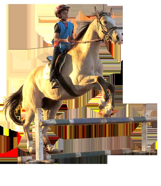 equitacion_hoga